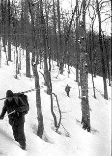 Наша мила  Наталочка істерично змусила нас зійти з полонини у глибокий лісовий  сніг