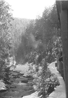 Гірська  залізниця - у цілковитій злагоді з природою