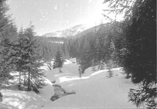 Гори й сніги  без кінця